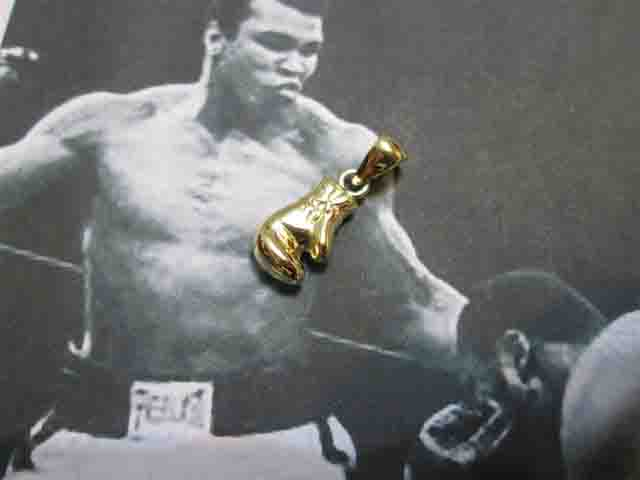 Guantone da Box (Oro) - Boxing Glove (Gold)